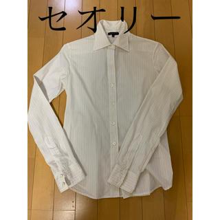 セオリー(theory)のセオリー シャツ サイズ2 (シャツ/ブラウス(長袖/七分))