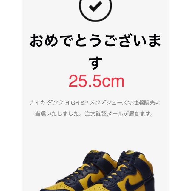 NIKE(ナイキ)のダンク ハイ dunk high 25.5cm NIKE MICHIGAN メンズの靴/シューズ(スニーカー)の商品写真