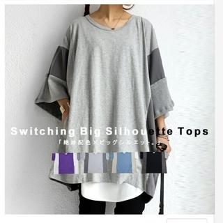 アンティカ(antiqua)のビックTシャツ(Tシャツ(長袖/七分))