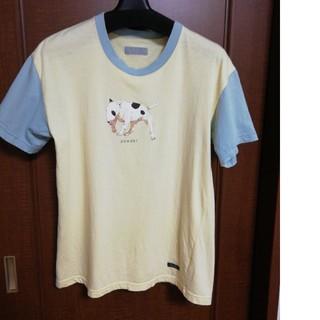 ピンクハウス(PINK HOUSE)ののんのんさま専用 POWDER ブルテリアT&ボーダーワンピ(Tシャツ(半袖/袖なし))