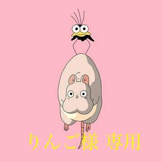 ニンテンドウ(任天堂)のりんご様 専用ページ(その他)