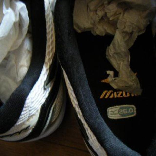 MIZUNO(ミズノ)のmizuno 26センチ  室内シューズ スポーツ/アウトドアのスポーツ/アウトドア その他(バレーボール)の商品写真