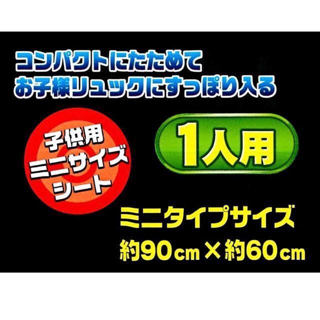 ポケモン(ポケモン)のポケットモンスターレジャーシート 子供用 エンタメ/ホビーのおもちゃ/ぬいぐるみ(キャラクターグッズ)の商品写真
