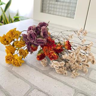 ドライフラワー花材 スプレーバラ&チース ハロウィンカラー(ドライフラワー)