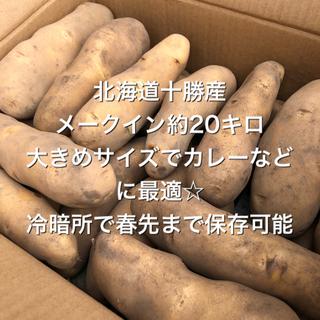 北海道十勝産メークインじゃがいも 約20キロ