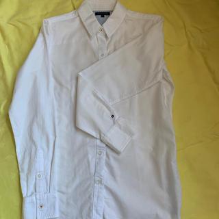 トミーヒルフィガー(TOMMY HILFIGER)のレディースシャツ(シャツ/ブラウス(長袖/七分))