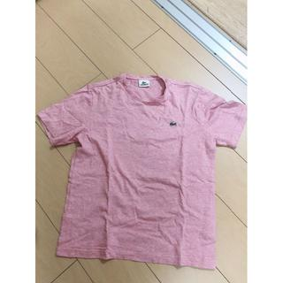 LACOSTE - LACOSTE ラコステ 半袖 Tシャツ ピンク M