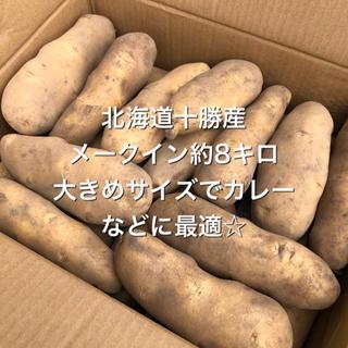 北海道十勝産 メークインじゃがいも 約8キロ