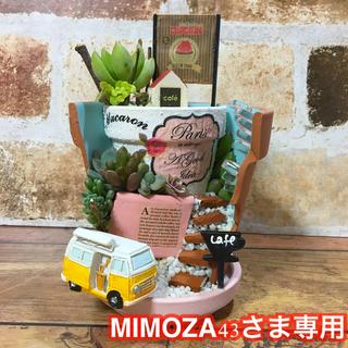 MIMOZA43さま専用 丘の上のカフェバー6号店(その他)