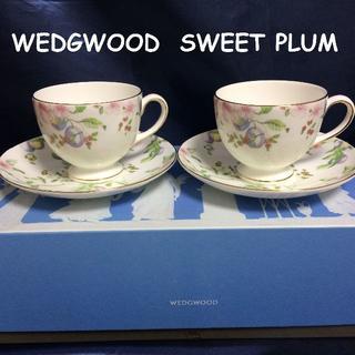 WEDGWOOD - コメントで5%引き! 新品 ウェッジウッド スイートプラム C&S 2客