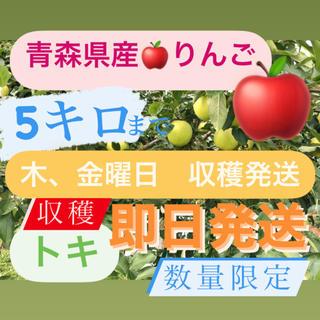 青森県産りんご ときりんご 数量限定