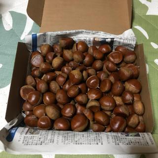 生栗 福島県産 自然栽培 1.4kg 3L〜M ランダムサイズ