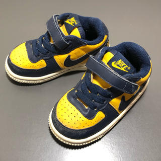 NIKE - NIKE terminator Michigan colour