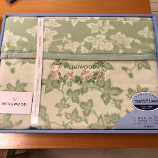 WEDGWOOD - 【新品】WEDGWOOD洗える綿毛布