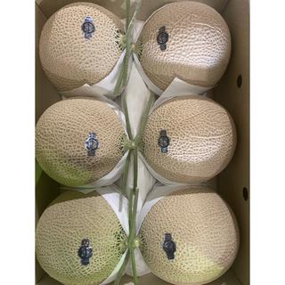 静岡 高級アールスメロン 白6玉 隔離栽培 アローマ(フルーツ)