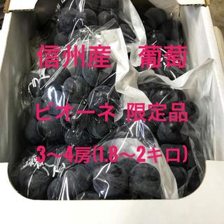信州産 葡萄 ピオーネ  3〜4房(フルーツ)