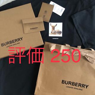 BURBERRY - 定価5.5万   BURBERRY  最新作!!!!!