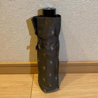ポロラルフローレン(POLO RALPH LAUREN)のポロ ラルフローレン 折りたたみ傘 Polo Ralph Lauren(傘)