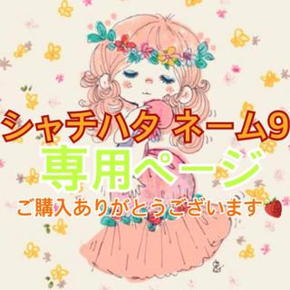 シャチハタ(Shachihata)のしぃちゃん様専用(印鑑/スタンプ/朱肉)