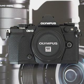 OLYMPUS - 送料無料 極美品 オリンパス OM-D E-M5 MarkⅡ ボディー ブラック