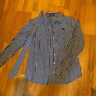 BURBERRY BLUE LABEL - バーバリーブルーレーベル ストライプシャツ