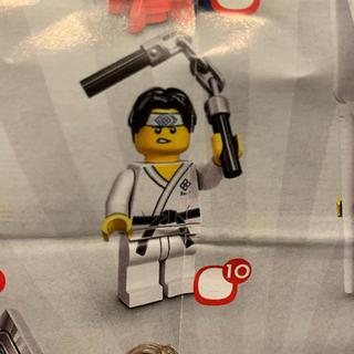 レゴ(Lego)のLEGO レゴ 71027 No.10(積み木/ブロック)