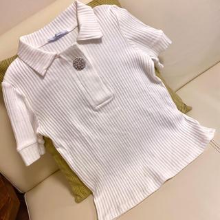 ZARA - zara ザラ トップス 襟 ビジュー ニット リブニット 白 半袖