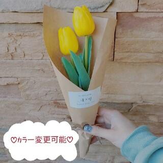ディーホリック(dholic)の韓国 花束 きいろい チューリップ(ドライフラワー)