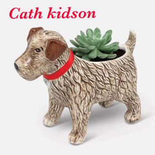キャスキッドソン(Cath Kidston)の【新品未使用】キャスキッドソン プランター(プランター)