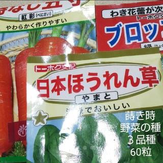 野菜の種 3品種 60粒セット(その他)