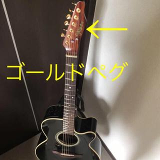 ヤマハ(ヤマハ)のDMP500-6BL 拘りカスタム 長渕剛モデル takamine 長渕ギター (アコースティックギター)