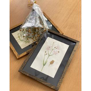 ウエディング antique  植物絵画(ウェルカムボード)