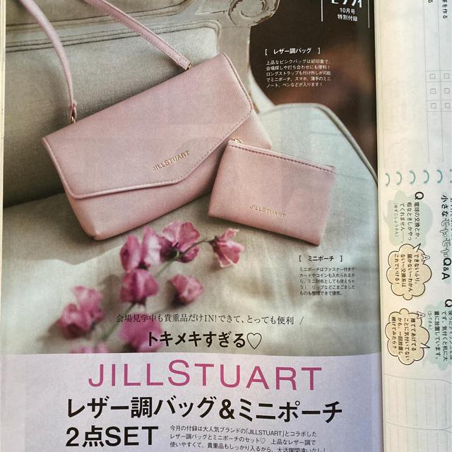 JILLSTUART(ジルスチュアート)のゼクシィ  10月号付録  レザー調バッグ&ミニポーチ ジルスチュアート レディースのファッション小物(ポーチ)の商品写真