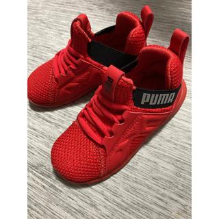 PUMA - PUMA 靴 15cm