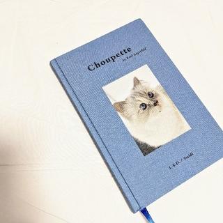 シャネル(CHANEL)のChoupette シュペット 写真集 猫 インテリア 洋書 ライフスタイル (洋書)