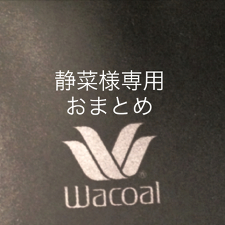 Wacoal - 【新品タグ付】ワコールSTUDIO FIVE★希少G75L(定価¥21,340)