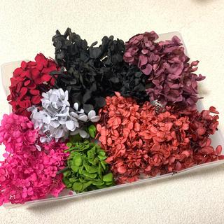 紫陽花、プリザーブドフラワー アジサイ