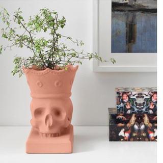 イケア(IKEA)のIKEA  クラウン スカル テラコッタ プランター 植木鉢 (プランター)