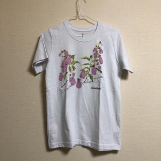 モンベル(mont bell)のmont-bell  モンベル レディース Tシャツ(Tシャツ(半袖/袖なし))