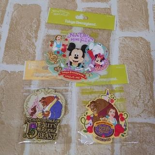 Disney - ディズニーランドランド☆新エリア マグネット3種