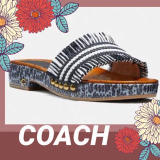 COACH - COACH   【コーチ】 サンダルブレーデン美品✨