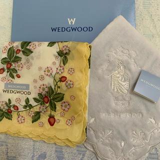 WEDGWOOD - ウェッジウッド ハンカチセット