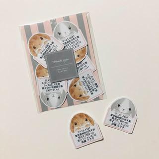 差出人シール 35枚 垂れ耳 うさぎ ウサギ ホーランドロップ(カード/レター/ラッピング)