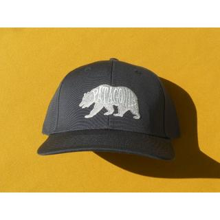 patagonia - パタゴニア Roger That Hat キャップ SMDB 2015