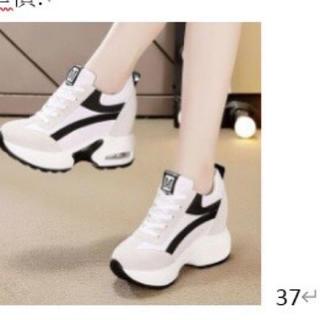 百組のカジュアル靴の坂と厚い底の超ハイヒールのビスケットの運動靴