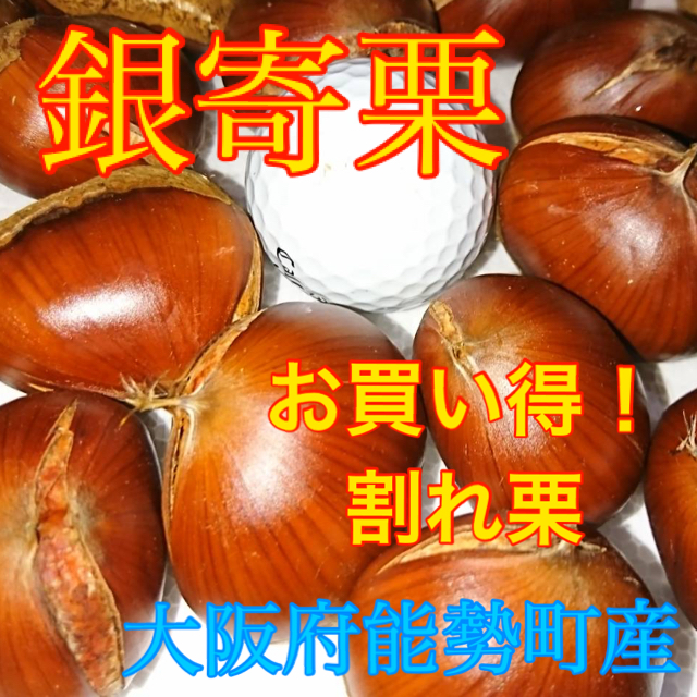 銀寄栗 割れ2KG 専用 食品/飲料/酒の食品(野菜)の商品写真