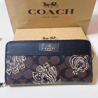 COACH - coach長財布 シグネチャーブラウンフラワー