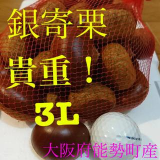 栗 銀寄栗 3L(野菜)