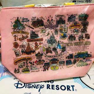 Disney - ディズニー リゾート マップ スーベニア ランチケース