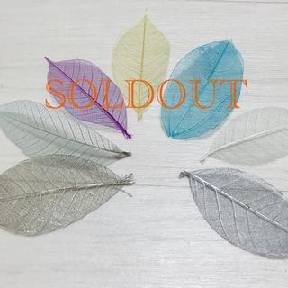 ハーバリウム花材(おすそわけ品)❁⃘*.゚(ドライフラワー)